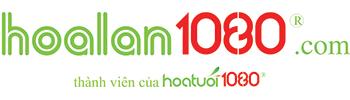 Hoa Lan Hồ Điệp | Địa Lan | Sài Gòn | Hà Nội| ĐT: 0985371080
